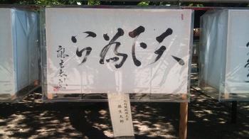×95 2011-07-16 14.10.48.jpg